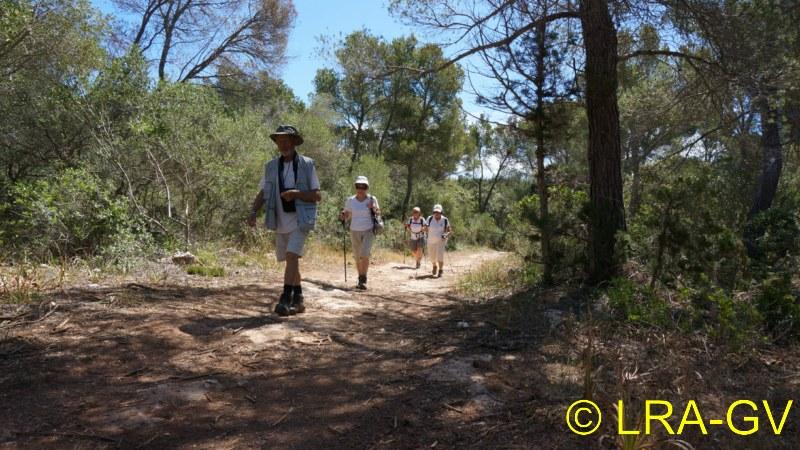 Voyage à Minorque, mai 2017 - 5 : Jeudi 18 mai : Cala Mitjana, Cala Trebaluger  Dsc05819