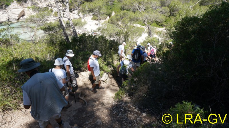Voyage à Minorque, mai 2017 - 5 : Jeudi 18 mai : Cala Mitjana, Cala Trebaluger  Dsc05821