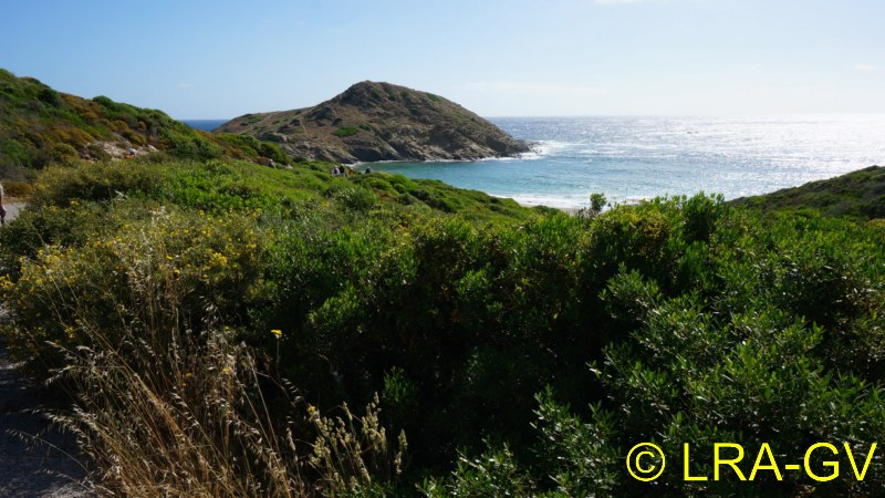 Voyage à Minorque, mai 2017 - 6 : Vendredi 19 mai : Sa Mesquiba , Es Grau Dsc05827