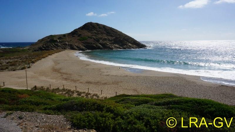 Voyage à Minorque, mai 2017 - 6 : Vendredi 19 mai : Sa Mesquiba , Es Grau Dsc05829