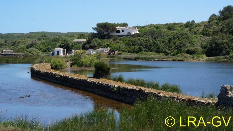 Voyage à Minorque, mai 2017 - 6 : Vendredi 19 mai : Sa Mesquiba , Es Grau Dsc05924