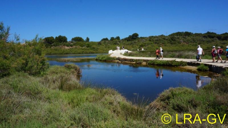 Voyage à Minorque, mai 2017 - 6 : Vendredi 19 mai : Sa Mesquiba , Es Grau Dsc05928