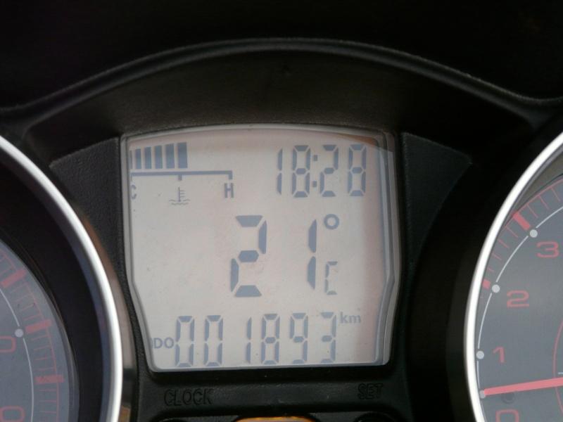 CR premier jour de printemps P1040026
