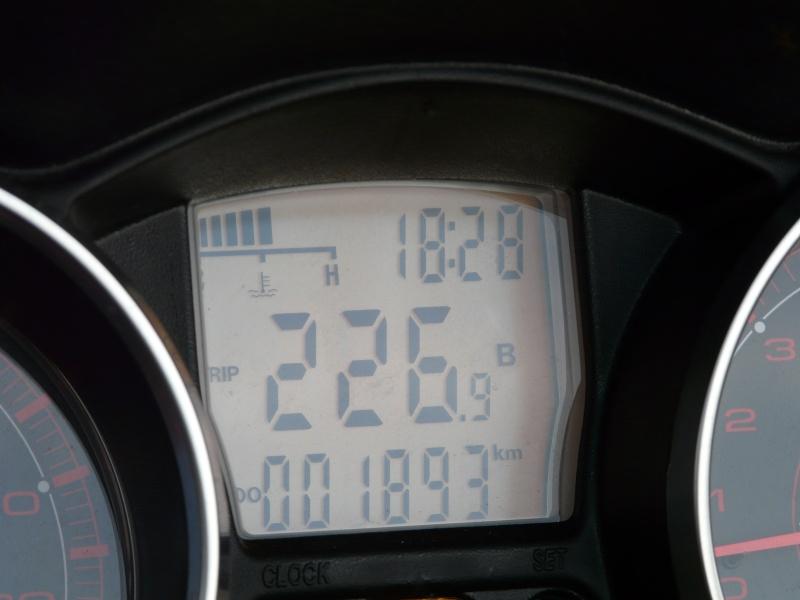 CR premier jour de printemps P1040027