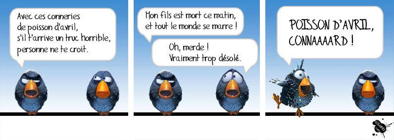 humour - Page 3 Oiseau10