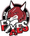 EBEL la puissante ligue autrichienne de hockey Hc_bol10