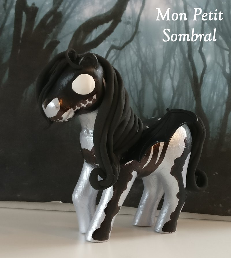 Mes poneys customs - Page 2 Sombra10