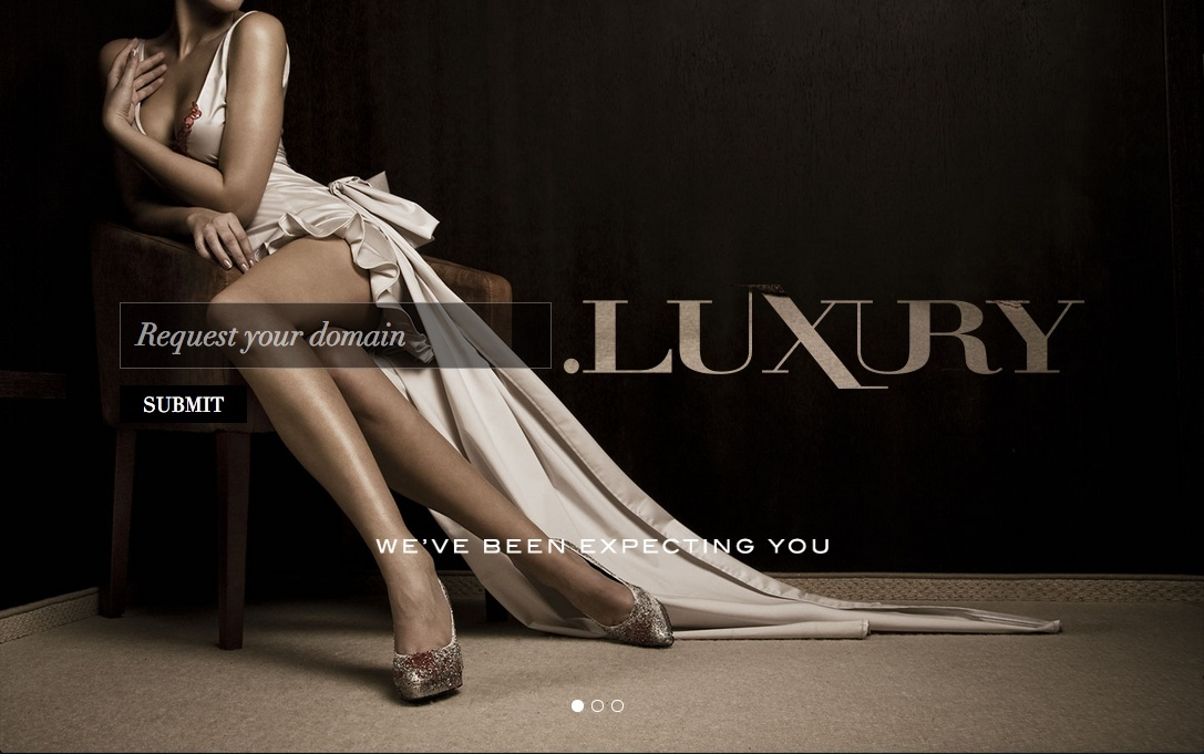 Information about .luxury Screen11
