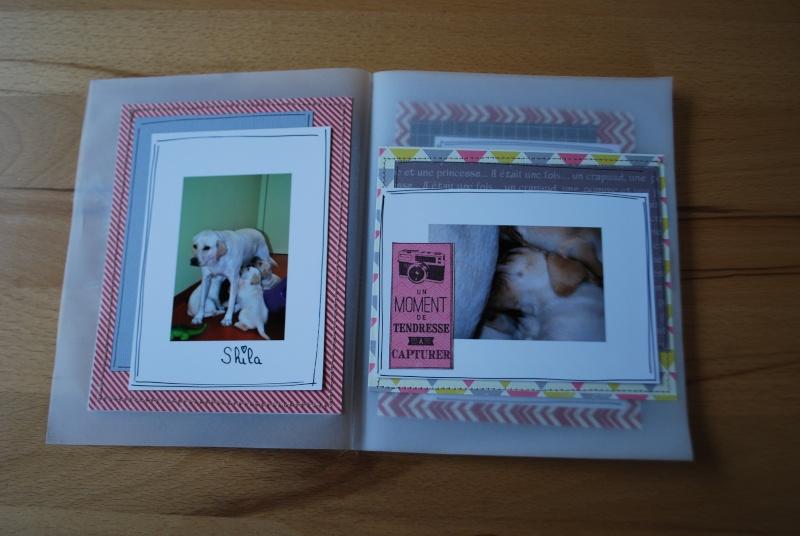 Collection Splendid Sunshine d'Echo Park: un mini tout pimpant et deux pages 26_12_25