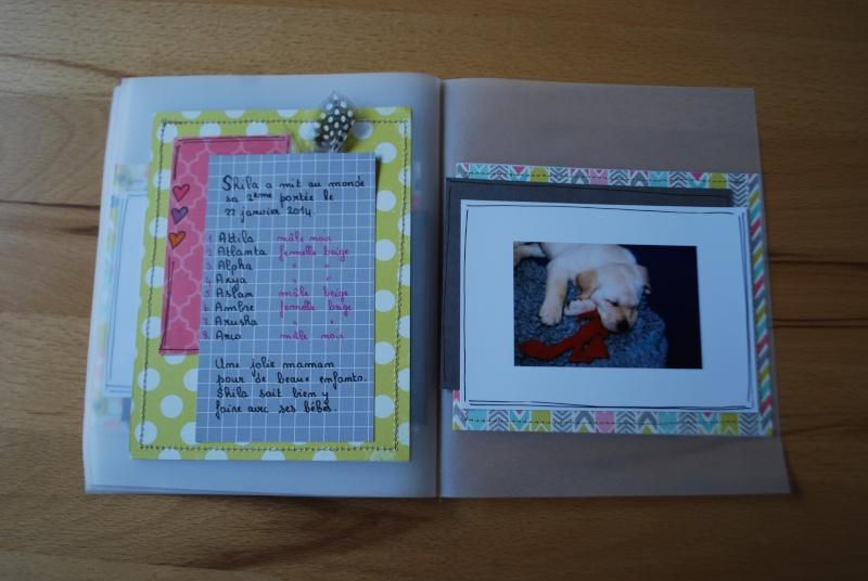 Collection Splendid Sunshine d'Echo Park: un mini tout pimpant et deux pages 26_12_31