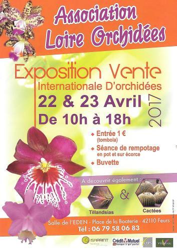 Expo Feurs (Loire)  22 et 23 avril 2017 F7024a10