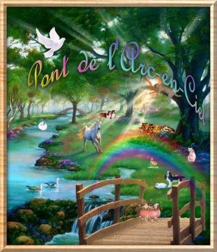 YELLOW mon petit coeur Pont1010
