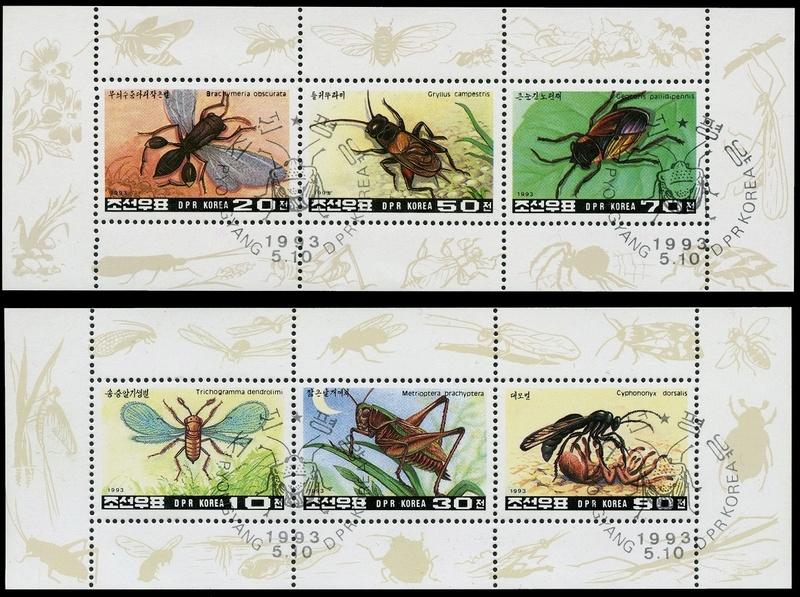 Bilderwettbewerb im Juni 2017 Insekt10