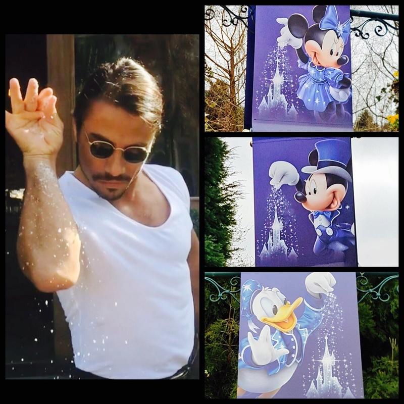 [Saison] 25ème Anniversaire de Disneyland Paris (à partir du 26 mars 2017) - Page 40 Img_0816