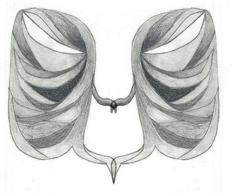 Les dessins a dede Vecteu10