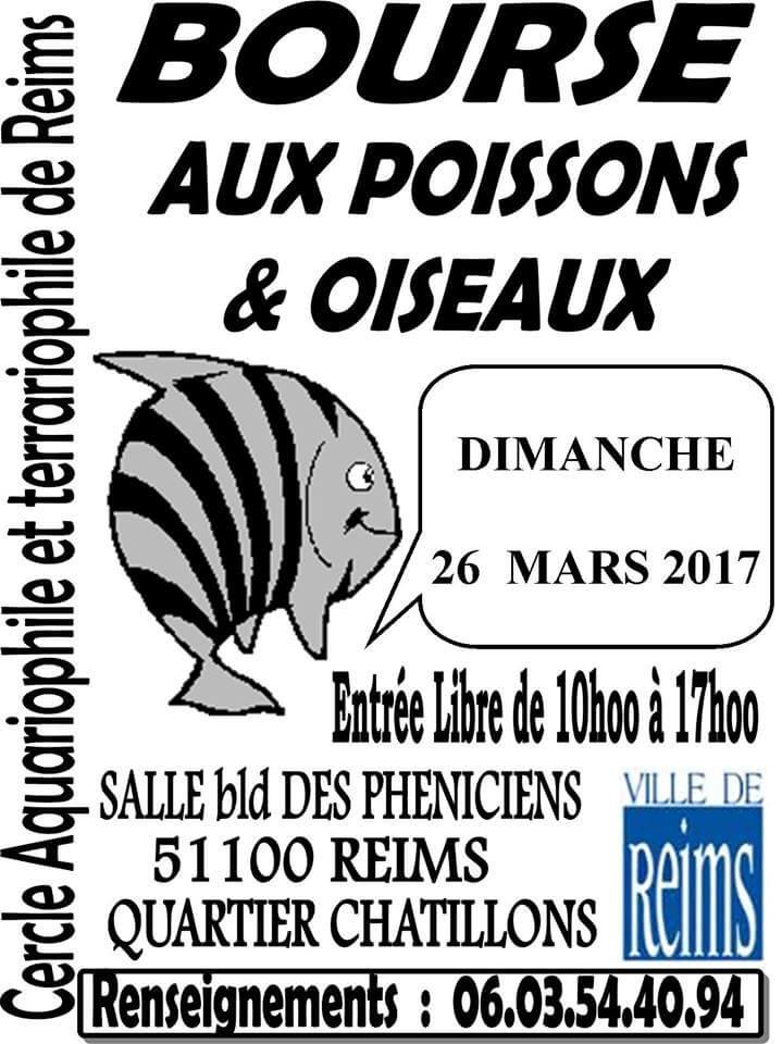 REIMS (51) - BOURSE aux POISSONS et OISEAUX  LE 26 Mars 2017 2017_011