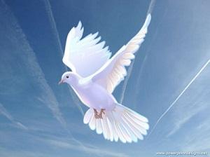Prions les 40 jours de carême avec les saints 238c8810