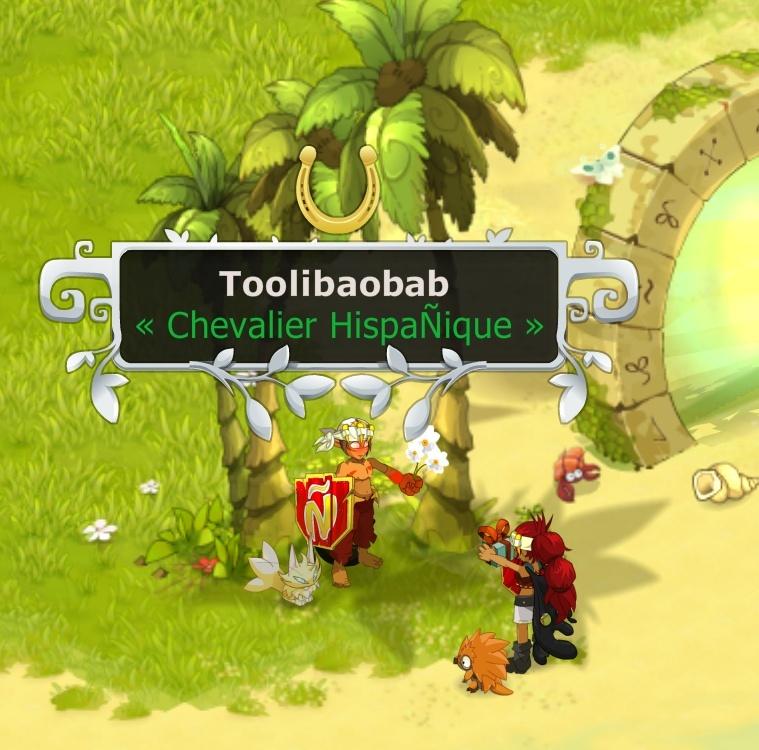 Candidature De Toolibaobab ! Screen11