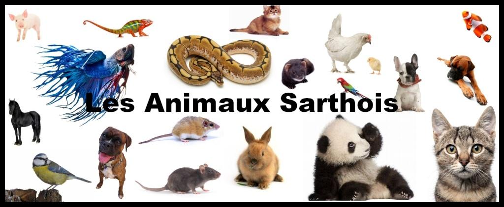 Les Animaux Sarthois