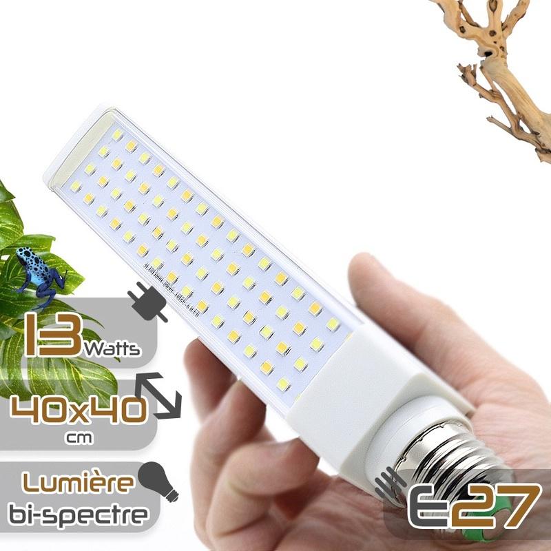 Comparatif LED Ampoul10