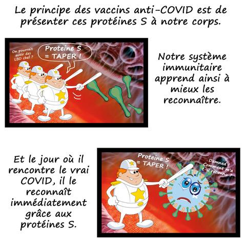 le vaccin COVID en BD 17716310