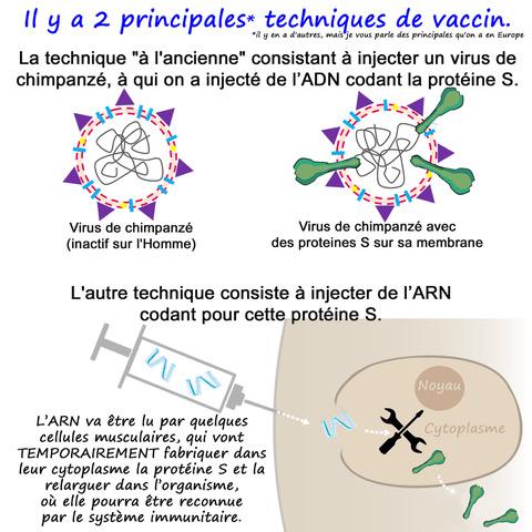 le vaccin COVID en BD 17716311