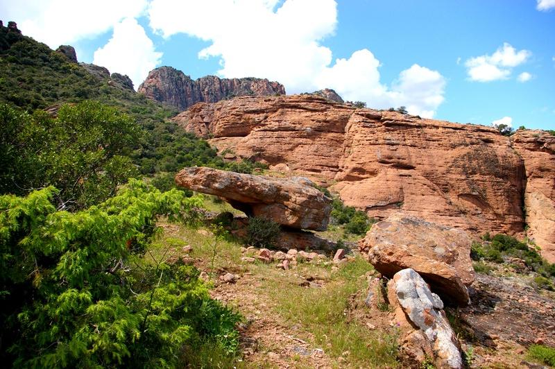 Sortie sur le rocher de Roquebrunne 83 Imgp2912