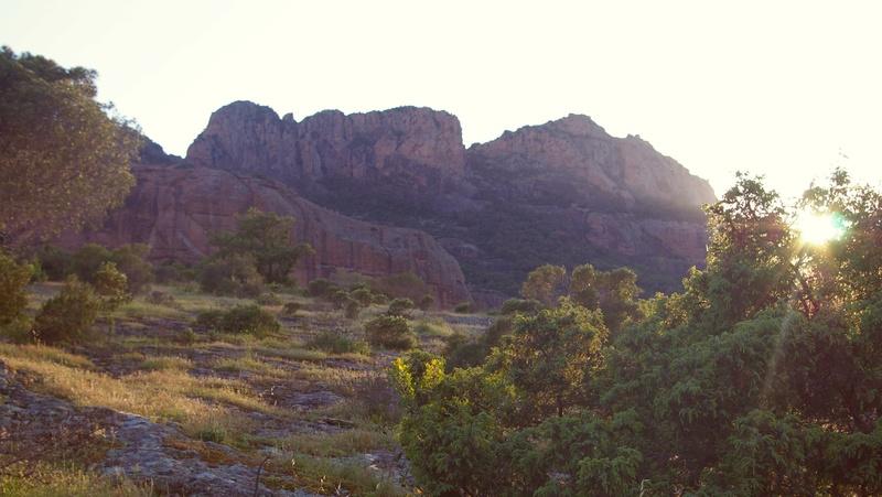 Sortie sur le rocher de Roquebrunne 83 Imgp3110