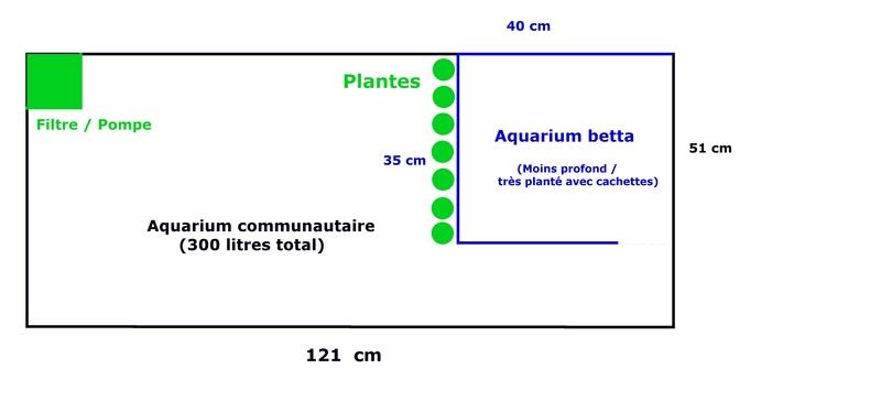 Question aux passionnés : Deux aquarium en un? Aquari10