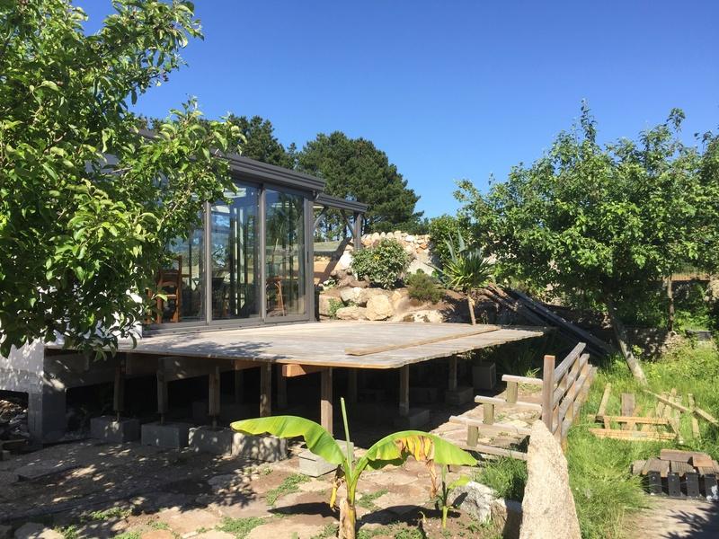 Terrasse en bois d'arbre Img_5725