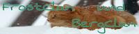 Frost-Clan Katzen suchen nun euch Picsar37
