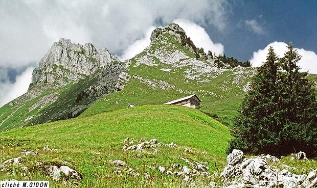 Les Chasseurs Alpins (disparu) 93071210