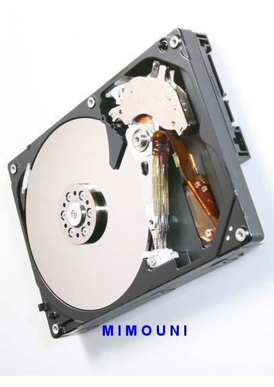 Le disquie Dur ATA , SATA, SSD, SCSI, interne, externe Mimoun10