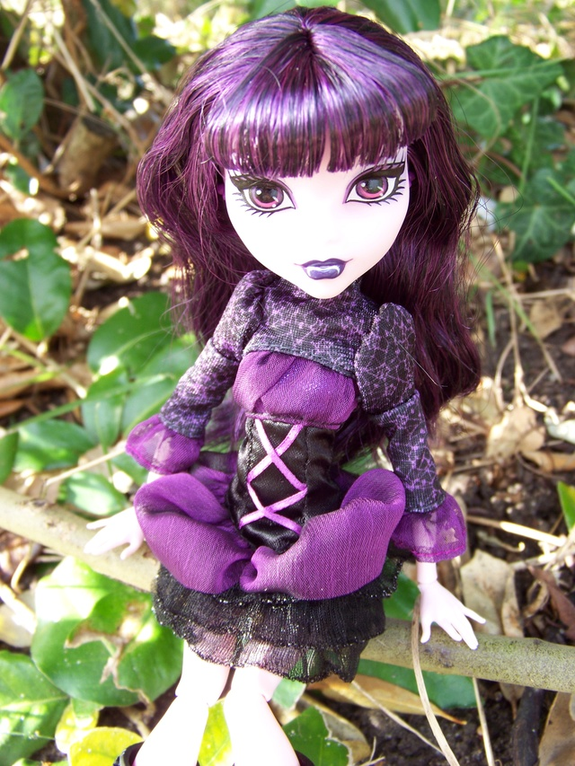 [Vente] ♥ Collection de Monster High ♥ 100_6710