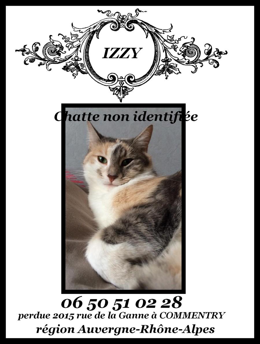 Izzy tricolore perdue dans l'allier en 2015 Affich13