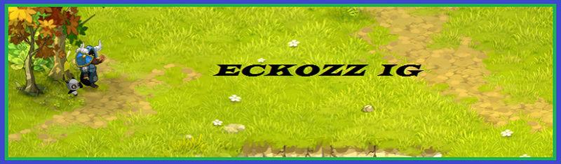 Candidature Eckozz Enu 200 [Admis] Ig10