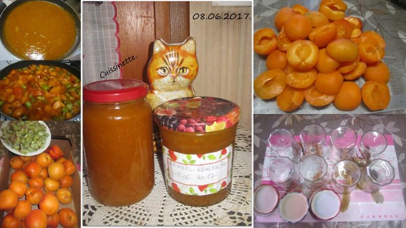 Confiture d'abricots.rhubarbe. Confit15