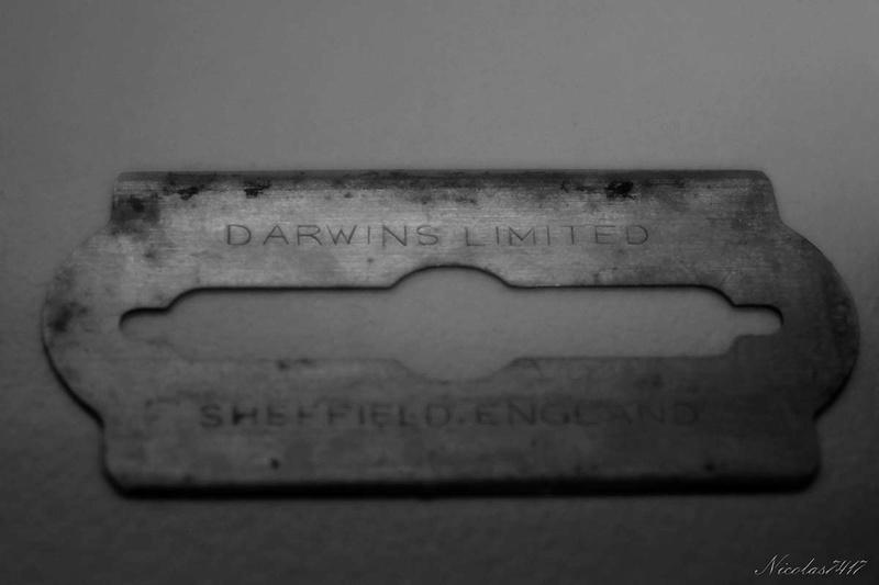 Darwin standard Dscf1816