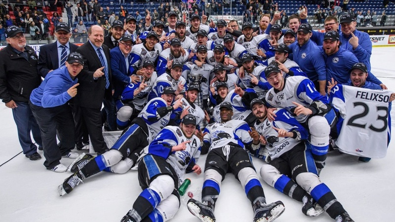 Ligue de hockey simulée du junior québécois