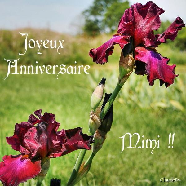Bon anniversaire Mimi ! Annimi11