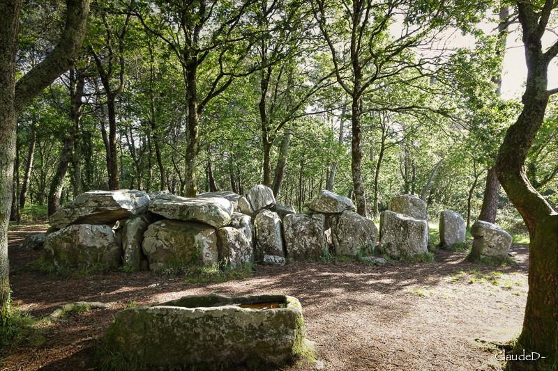 erdeven - Mégalithes d' Erdeven (56) Manegr13
