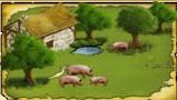 Guide de l'élevage de cochons Image_10