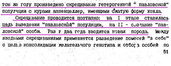 Павловская порода кур - Страница 18 Image186