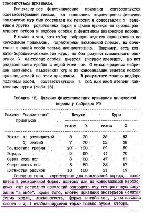 Павловская порода кур - Страница 18 Image187