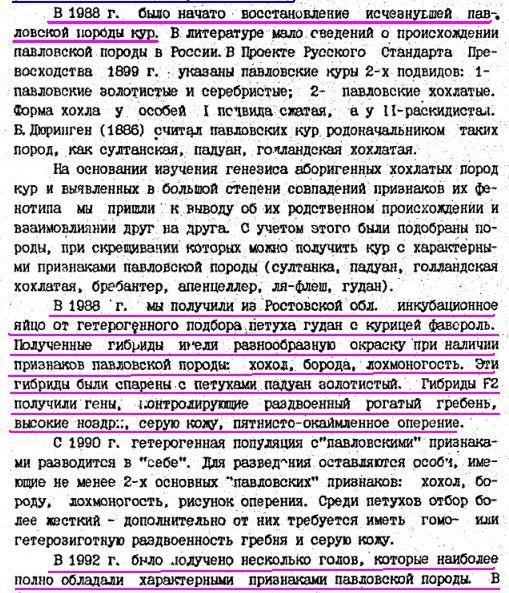 Павловская порода кур - Страница 18 Image188