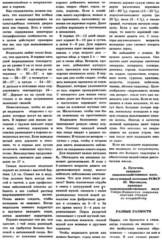 Индюки. Всё о породах и их содержании - Страница 3 Image314