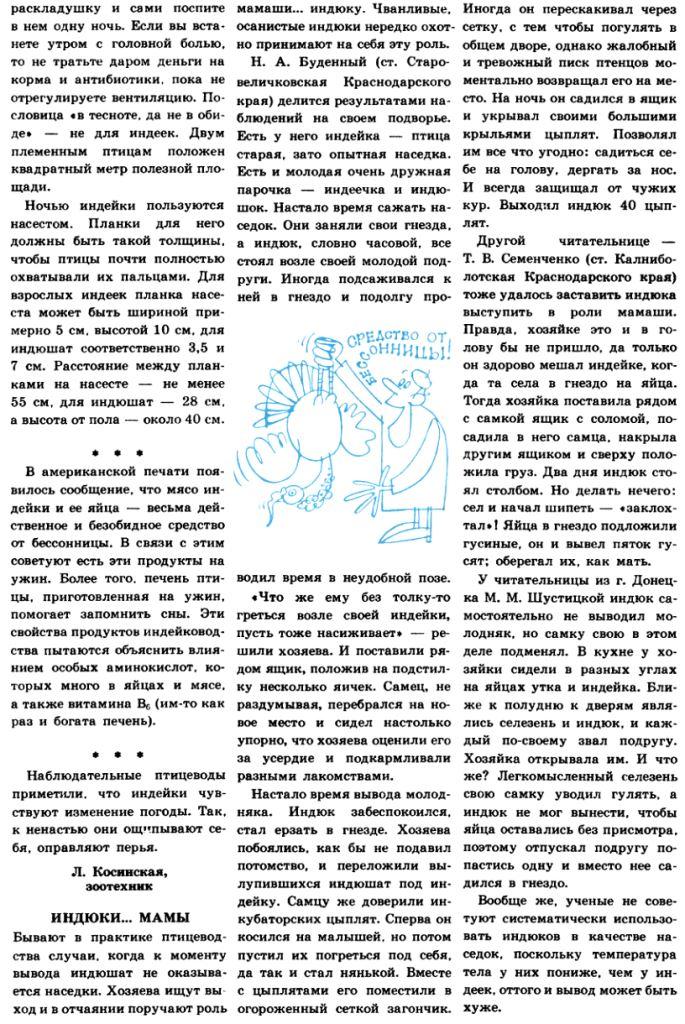 Индюки. Всё о породах и их содержании - Страница 3 Image317
