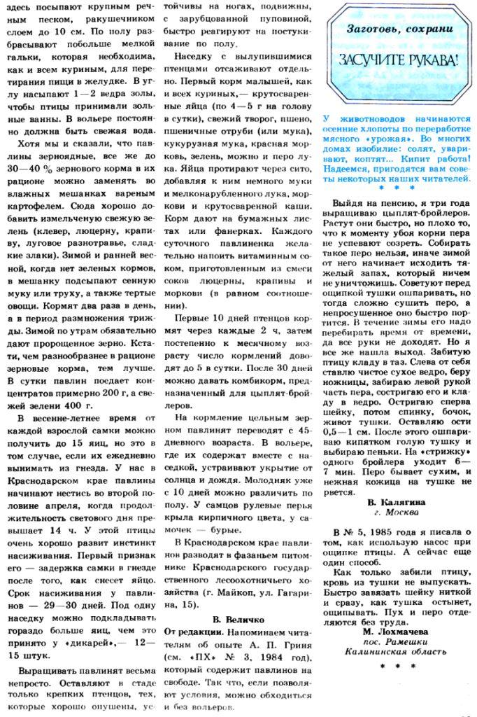 Павлины - Страница 18 Image326