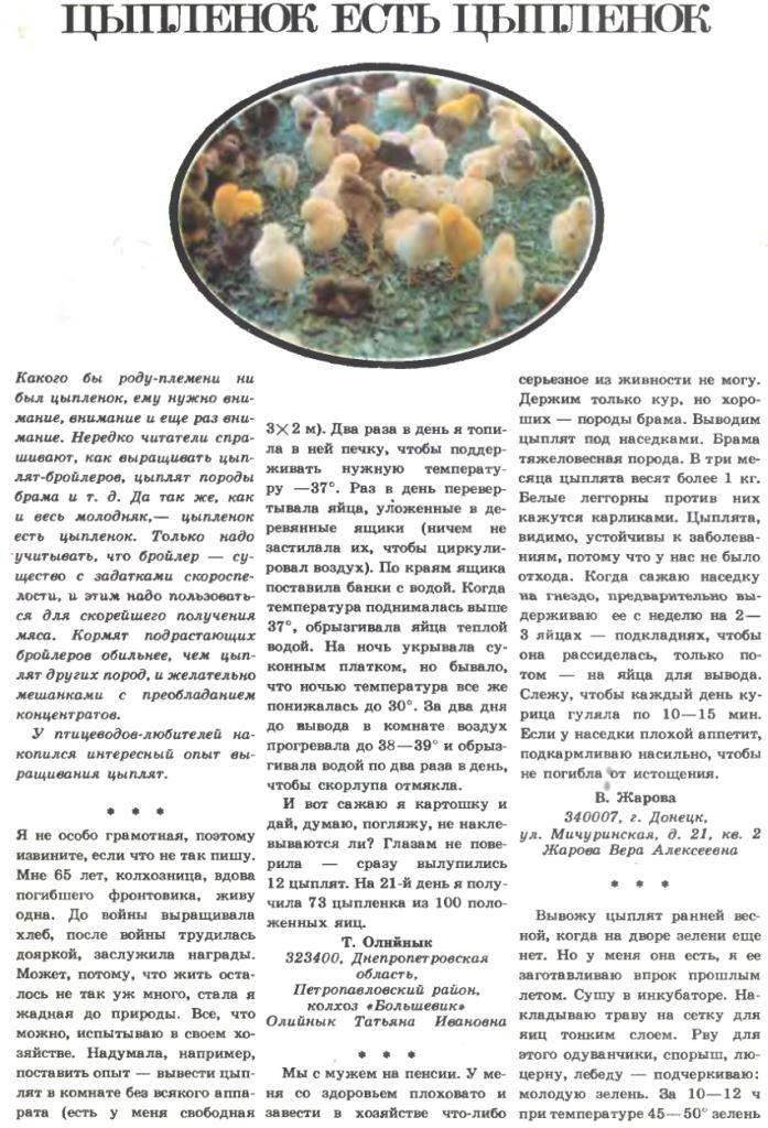 Поговорим о цыплятах - Страница 5 Image344