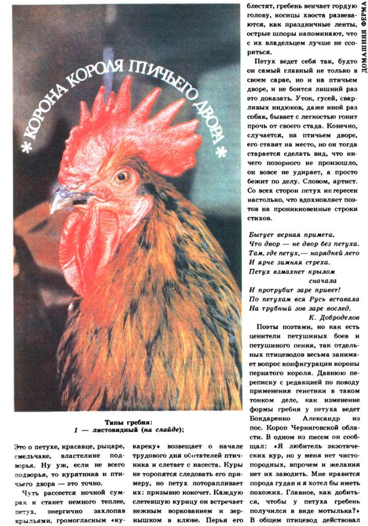 Селекция птиц - Страница 2 Image528